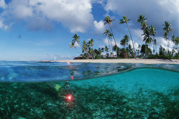 Wakatobi Island: Under the Water and Above the Water Beauty