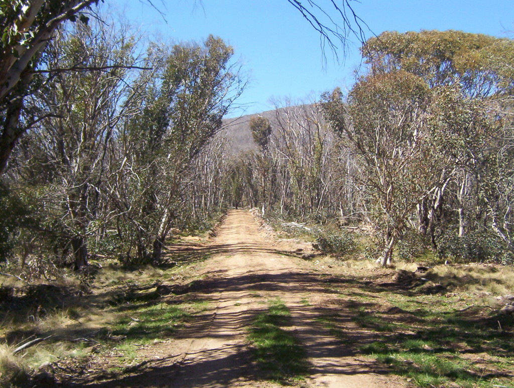 Namadgi_National_Park_walking_trail