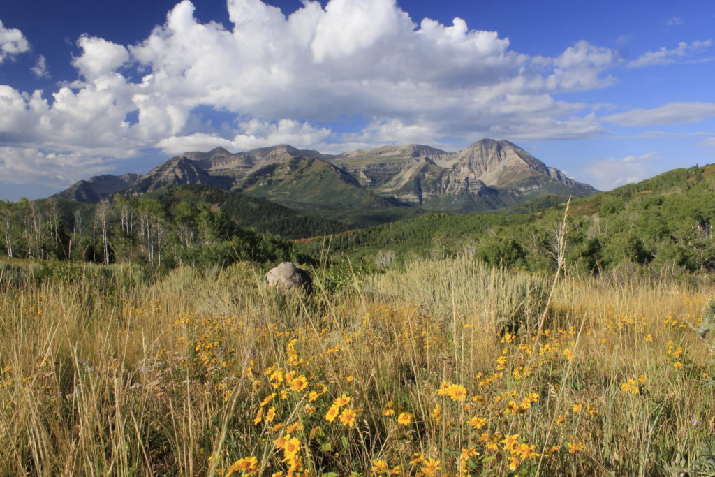 Heber Valley, Utah: Experience the Dazzling Outdoor Adventure