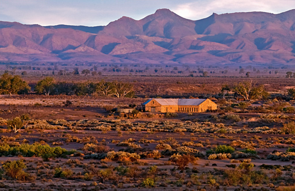 nilpena-station-with-the-flinders-ranges-behind