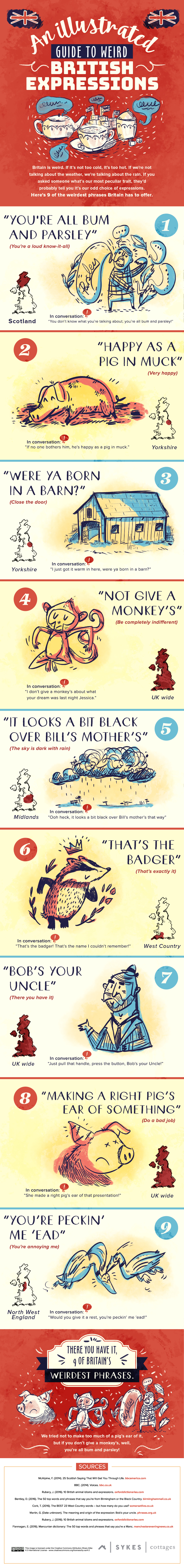 9 Weird British Expressions Illustrated