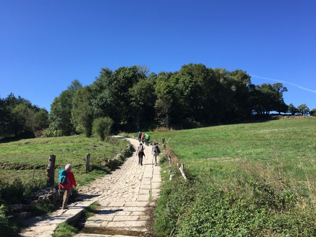5 Best Camino de Santiago Routes